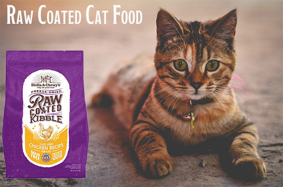 Raw Coated Cat Food