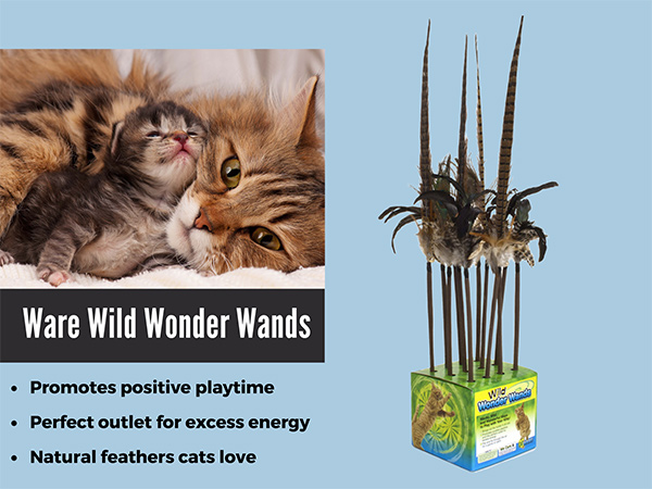 Ware Wild Wonder Wands for Cats